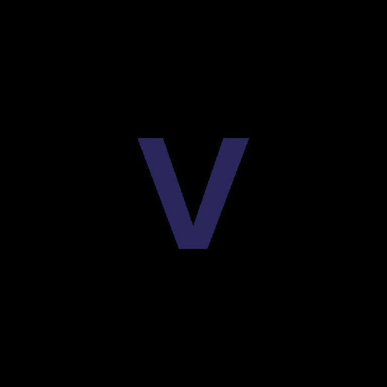 Voicedata Logo